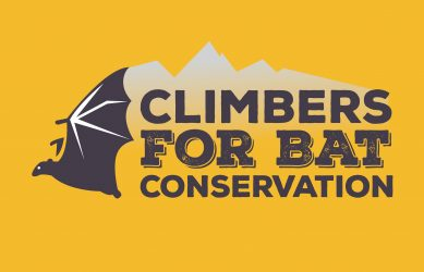 Climbers for Bat Conservation